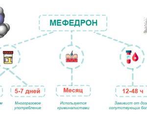 как долго выводится мефедрон